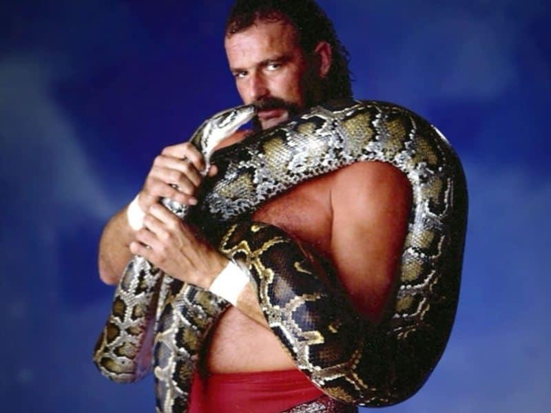 jake_the_snake