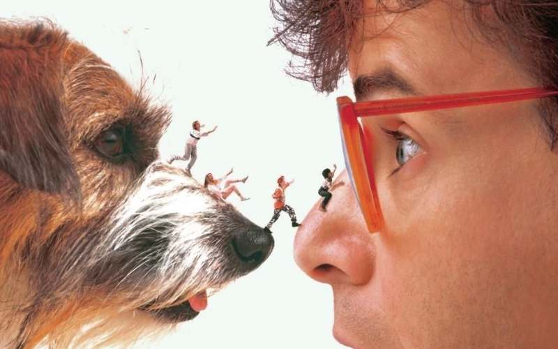 honey i shrunk the kids best 80s movies on disney plus