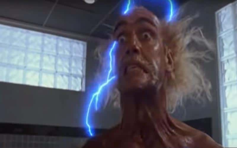 Hulk Hogan in mr nanny movie